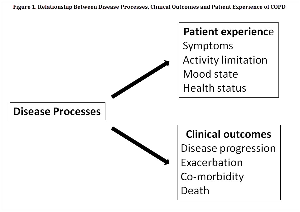 Progress in Characterizing Patient-Centered Outcomes in COPD, 2004-2014 - Figure 1