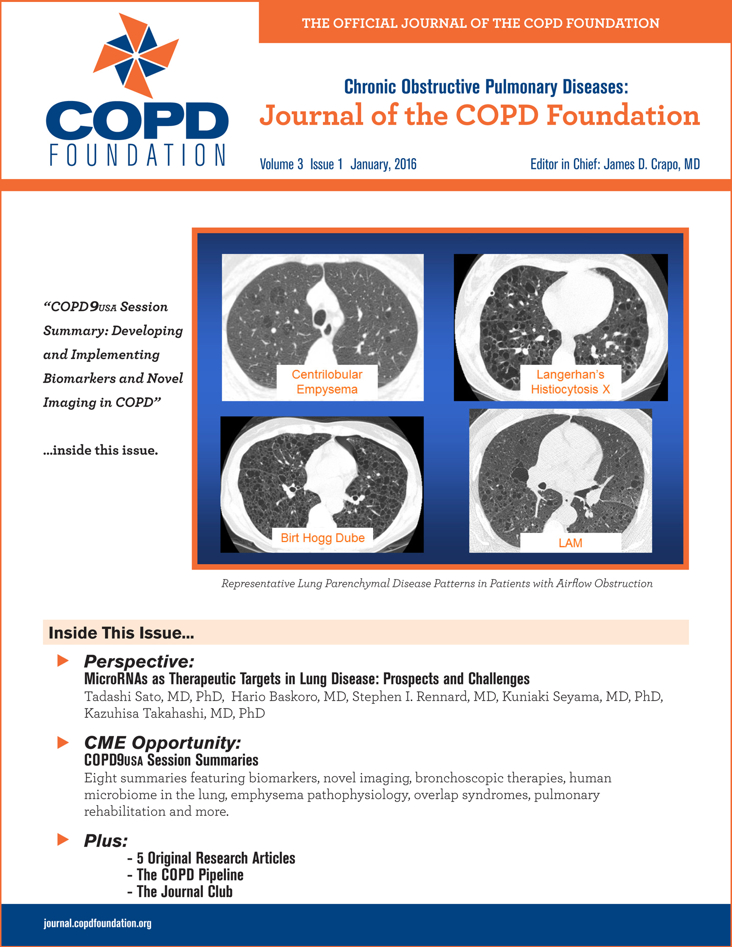 Peak expiratory flow rate and copd exacerbation journal of copd jcopdf cover image nvjuhfo Choice Image