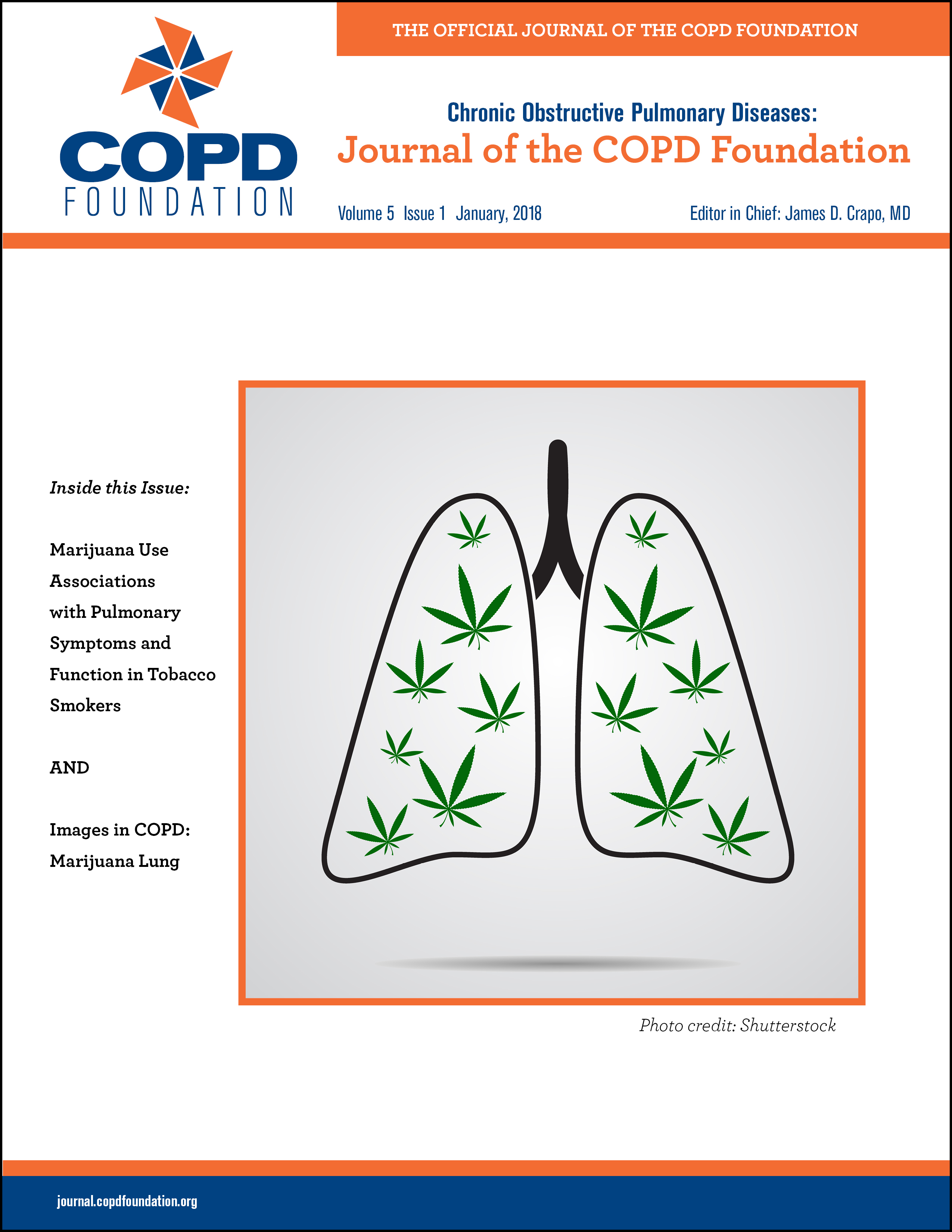 The COPD Pipeline | Journal of COPD Foundation